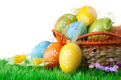 Ovos de Easter com grama verde no branco Fotografia de Stock