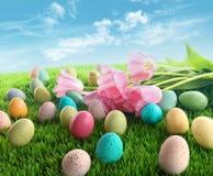 Ovos de Easter com os tulips cor-de-rosa na grama Foto de Stock Royalty Free