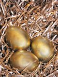 Ovos de Easter dourados Fotografia de Stock