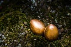 Ovos de Easter dourados Imagens de Stock Royalty Free