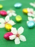 Ovos de Easter e flores da mola fotos de stock royalty free