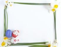 Ovos de Easter e narciso Fotos de Stock