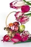 Ovos de Easter e tilips Imagem de Stock Royalty Free