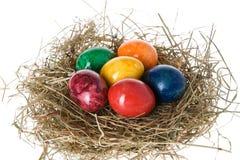 Ovos de Easter em um ninho fotografia de stock