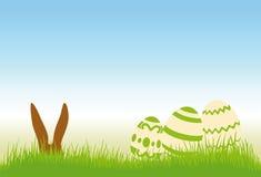 Ovos de Easter em um prado Imagens de Stock Royalty Free