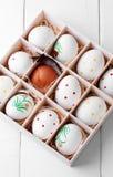 Ovos de Easter em uma caixa Fotos de Stock