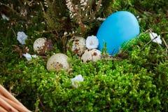 Ovos de Easter em uma cesta Imagens de Stock