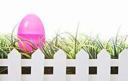 Ovos de Easter isolados no branco Fotos de Stock Royalty Free