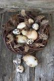 Ovos de Easter na cesta de vime Imagens de Stock Royalty Free