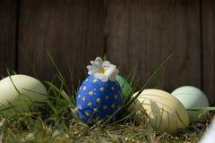 Ovos de Easter na grama Fotografia de Stock Royalty Free
