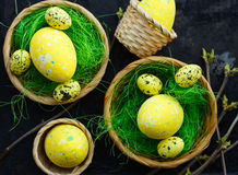 Ovos de Easter na grama verde Foto de Stock