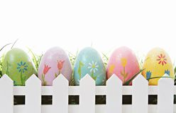 Ovos de Easter no branco Foto de Stock