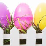 Ovos de Easter no branco Imagens de Stock Royalty Free