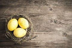 Ovos de Easter no ninho Fotos de Stock