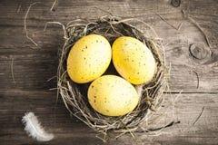 Ovos de Easter no ninho Fotografia de Stock Royalty Free
