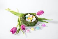 Ovos de Easter no ninho do pássaro imagem de stock