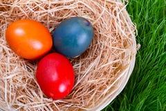 Ovos de Easter no ninho sobre a grama Imagem de Stock