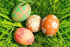 Ovos de Easter que escondem na grama foto de stock royalty free