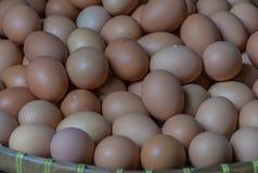 Ovos de galinha frescos Fotografia de Stock Royalty Free