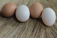 Ovos de galinhas frescos e ovos do pato Fotografia de Stock