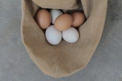 Ovos de galinhas frescos e ovos do pato Imagens de Stock