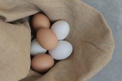 Ovos de galinhas frescos e ovos do pato Fotos de Stock Royalty Free