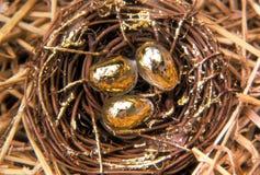 Ovos de ninho dourados Imagem de Stock