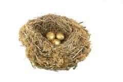 Ovos de ninho dourados Fotos de Stock