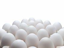 Ovos de uma galinha na embalagem em um fundo branco. imagens de stock