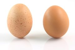 Ovos diferentes Fotografia de Stock