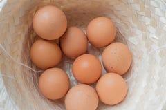 Ovos do close-up Imagens de Stock