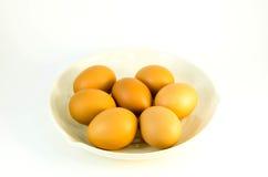 Ovos do grupo Imagem de Stock