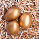 Ovos dourados Imagens de Stock Royalty Free