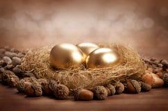 Ovos dourados no ninho Imagens de Stock