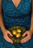 Ovos dourados no ninho Fotos de Stock Royalty Free