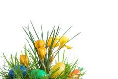 Ovos e açafrão de Easter. fotos de stock