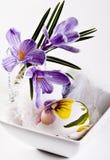 Ovos e açafrões de Easter Foto de Stock