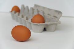 Ovos e caixa do ovo Foto de Stock