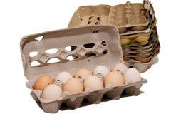 Ovos e caixas frescos do ovo Imagem de Stock Royalty Free