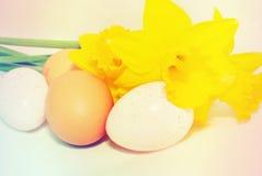 Ovos e daffodils de Easter Imagens de Stock Royalty Free