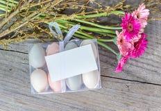 Ovos e flores de Easter Fotografia de Stock