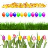 Ovos e flores de Easter em uma fileira Fotos de Stock Royalty Free