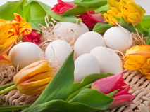 Ovos e flores que encontram-se na bandeja da palha Imagem de Stock Royalty Free