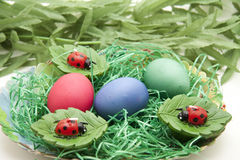 Ovos e joaninha de Easters Fotos de Stock Royalty Free