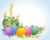 Ovos e mimosa de Easter Fotografia de Stock Royalty Free
