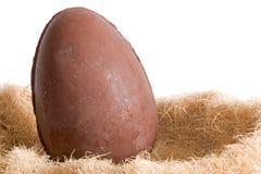 Ovos e ninho de Easter fotos de stock