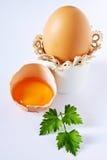 Ovos e salsa no branco imagem de stock royalty free