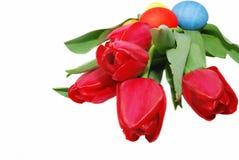 Ovos e tulips grandes imagem de stock royalty free
