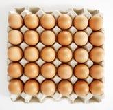 Ovos em Tray On White Background Fotos de Stock