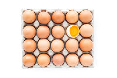 Ovos em um cartão, trajeto de grampeamento Imagens de Stock Royalty Free